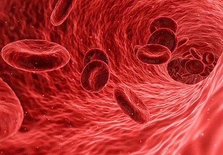 PRP and Stem Cell Therapies